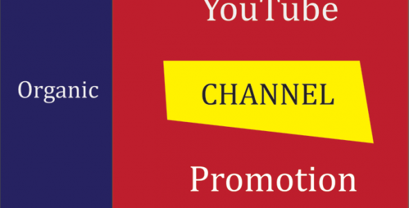 I will grow organic your channel via youtube video promotion